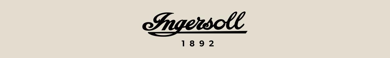 Disney By Ingersoll Banner