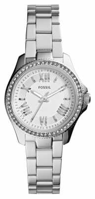 Fossil Womens Cecile Stainless Steel AM4576