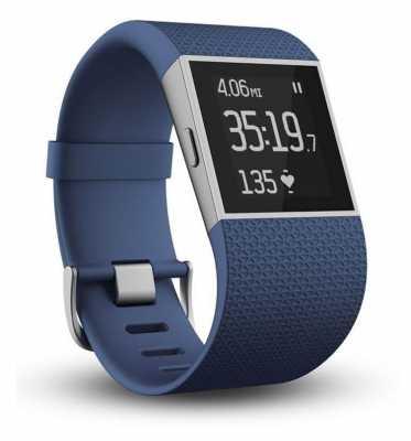 Fitbit Surge Blue Large Size FB501BUL