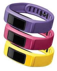 Garmin Canary, Pink, Violet Vivofit 2 Bands L 010-12336-04